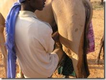 SOMALIA 239